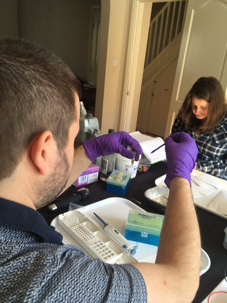 Nick Aplin and Clare Blencowe of the Sussex Fungus Group testing DNA extraction and amplification.